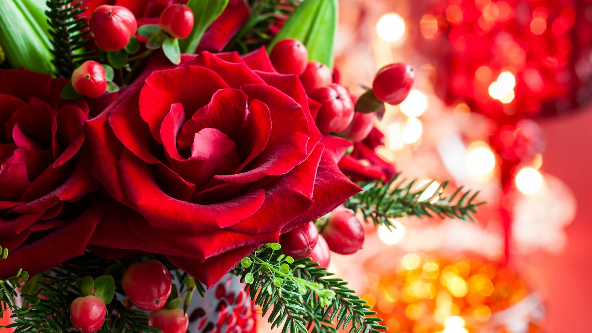 magic love bokeh red xmas roses merry rose christmas blooms karlsruhe blooms adventskalender gewinnspiel